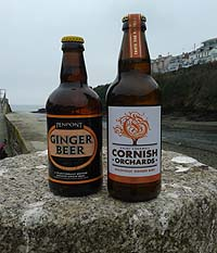 Cornish Alcoholic Ginger Beer's