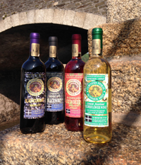 Cornish Moorland Fruit Wines