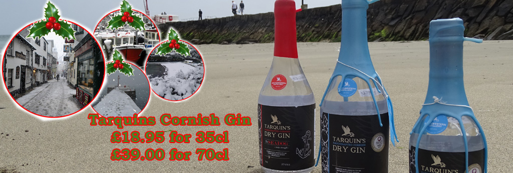 chistmas-gin-banner-1-copy