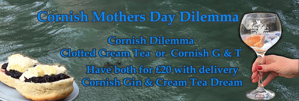 Cornish Dilema Banner copy