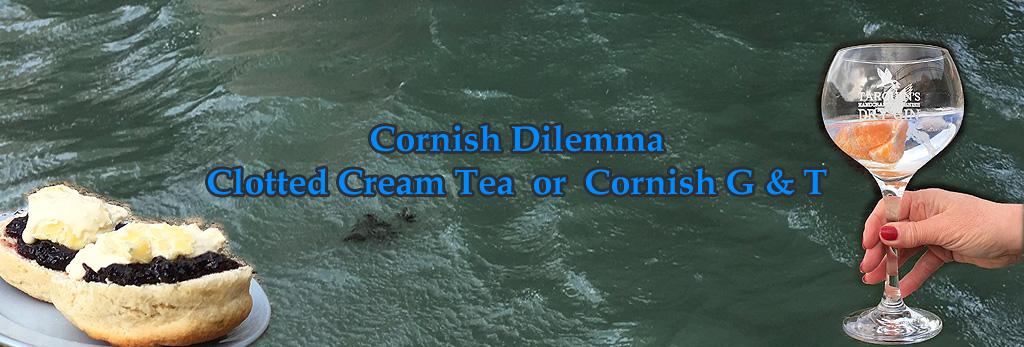 Cornish Dilema Banner1