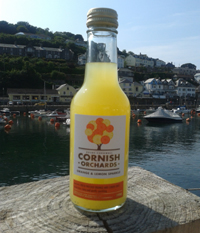 Cornish Orchards Orange and Lemon Sparkle 240ml