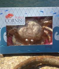 Looe Crunchy Crabs